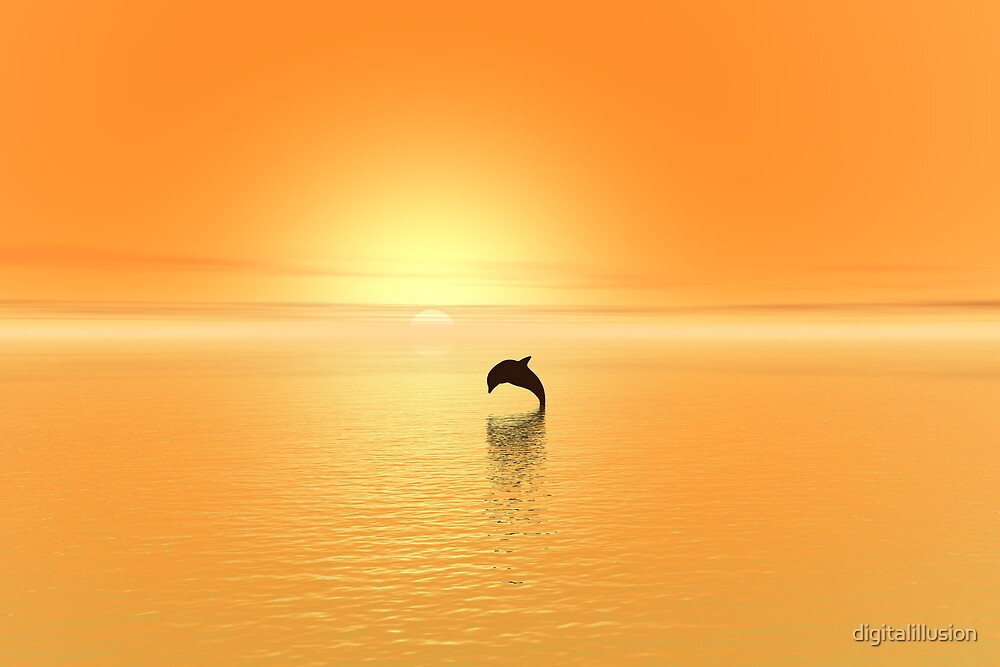 Sunset dolphin by digitalillusion