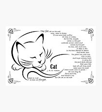 'Cat' by JRR Tolkien Photographic Print