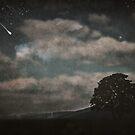Nightfall in Middleearth by Denise Abé