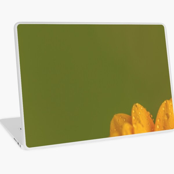 Wet Yellow Petals against Green background Laptop Skin