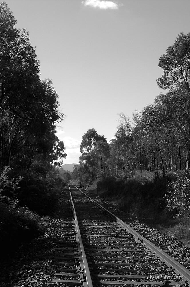 Railway tracks by Silvia Solberg
