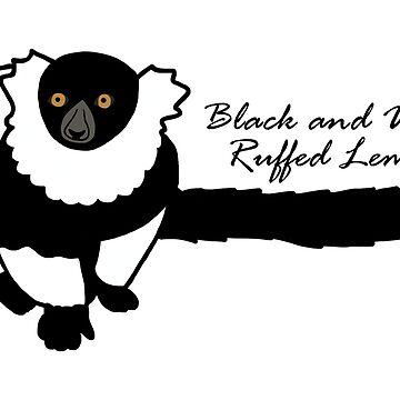 Kizzy B&W Ruffed Lemur w/ Common Name by wildlifeandlove