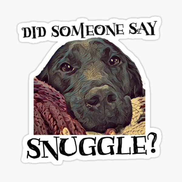 Did Someone Say Snuggle Lovable Black Lab  Sticker