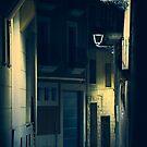 Twilight by Svetlana Sewell