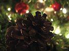 Christmas Tree by Nathalie Chaput
