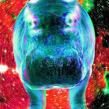 Space Hippo Acid Remix by lord-sativa
