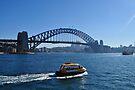 NDVH Sydney 3 by nikhorne