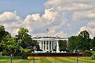 NDVH Washington D.C. 1 by nikhorne