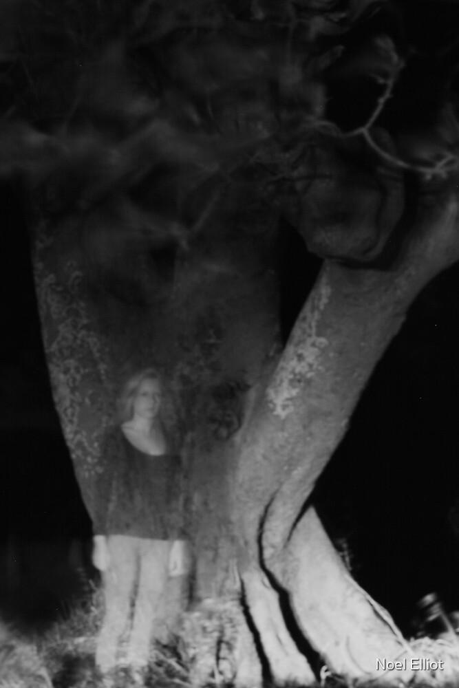 The Tree Sees Through Me by Noel Elliot