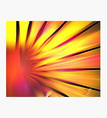 Yellow Red Daisy Photographic Print