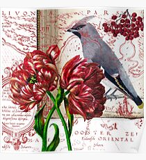 Bohemian Waxwing and Red Tulips Collage Poster