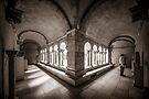 Exploring Cloisters II by Ray Warren