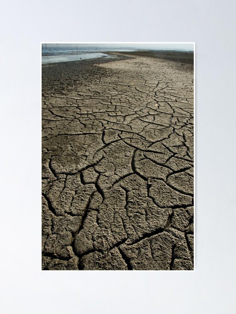Alternate view of Salton Sea: Evaporation Poster