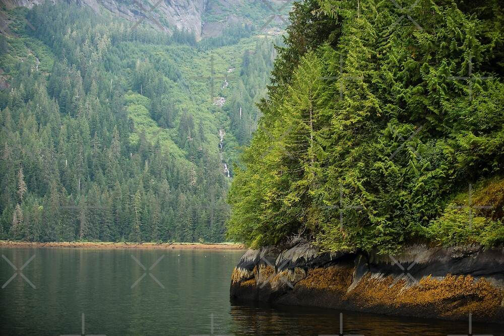 Misty Fjords National Monument by SusanAdey