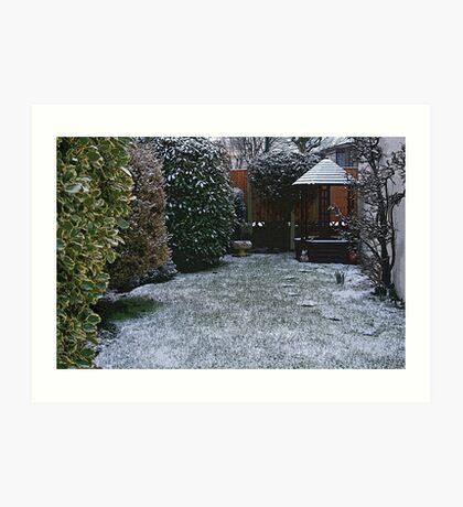 Snow in the Garden Art Print