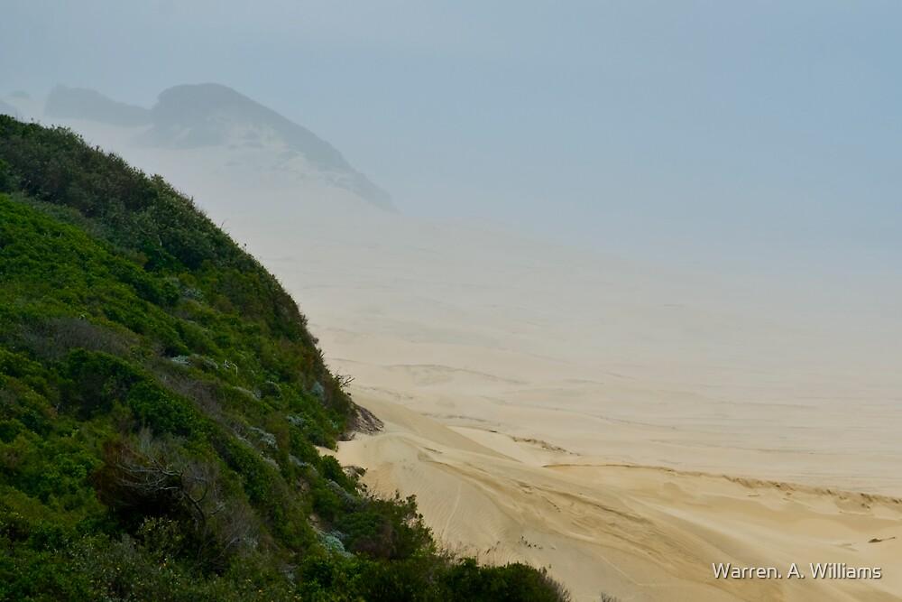 Misty Dunes by Warren. A. Williams