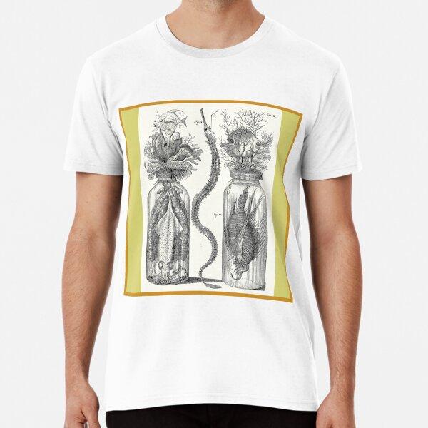 Cabinet of Curiosities - Frederik Ruysch Diorama 1720 - Squids,  Lion Fish, Octopus, Ocean Premium T-Shirt