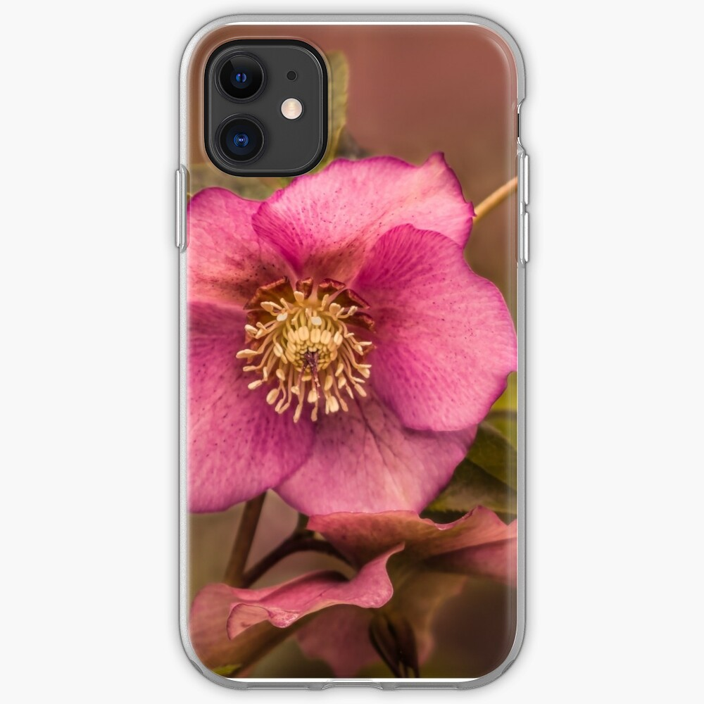 Christmas Rose iPhone Case & Cover