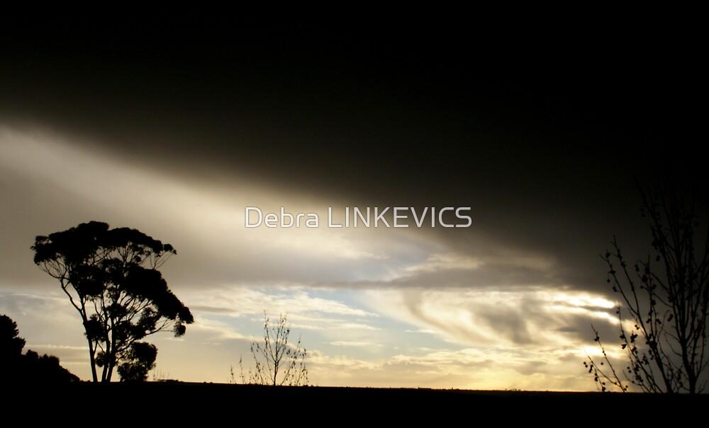 ~Incoming Storm~ by Debra LINKEVICS