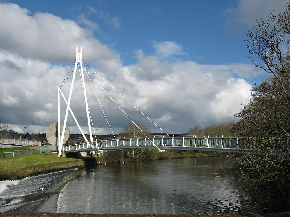 Millners Bridge, Exeter by gemtrem