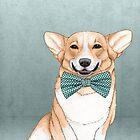 Corgi Hund von barruf