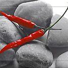 Scharfe Steine mit Chili im Kontrast by Aviana