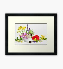 Colorful wild herbs Framed Print