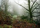 Malvern Hills : Winter by Angie Latham