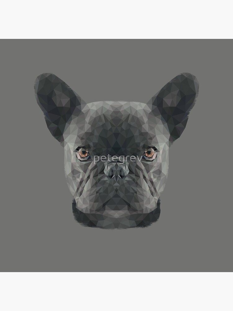 The French Bulldog by petegrev
