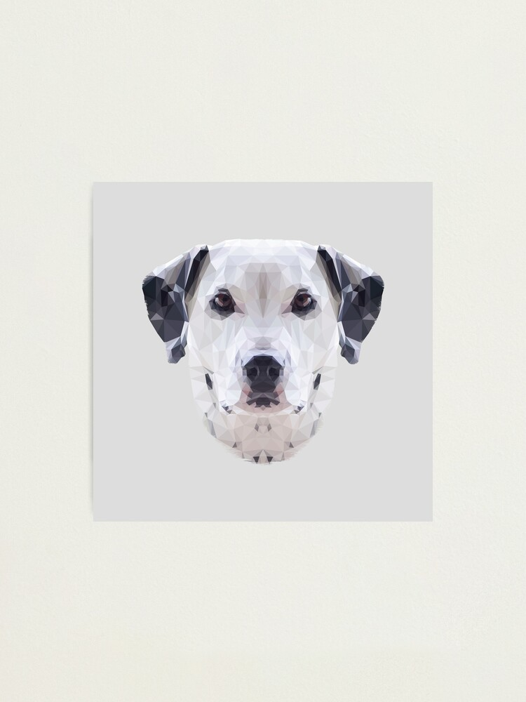 Alternate view of The Dalmatian Photographic Print
