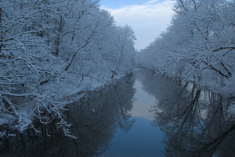 First Snow on Creek by Michael  Dreese
