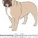 French Bulldog - Fawn by grumpyteds