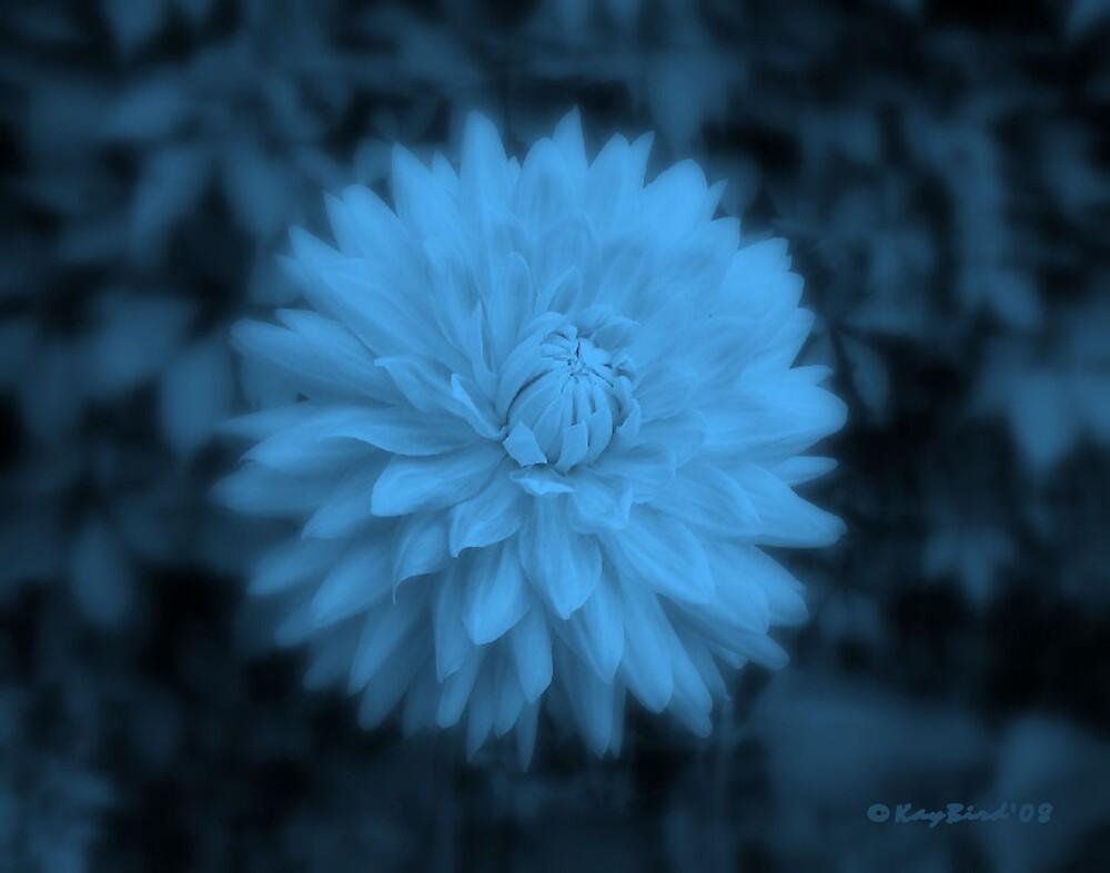 Blue Ice by Kay  G Larsen