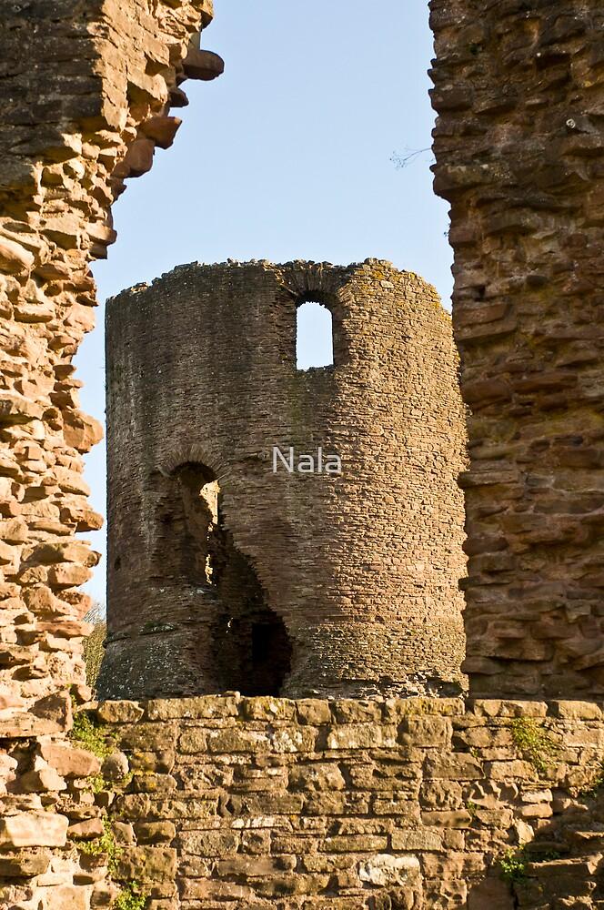 Skenfrith Castel  by Nala