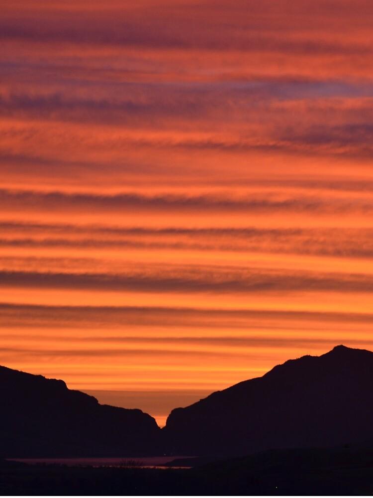 Sonnenuntergang über Zeder von aldenofwapiti