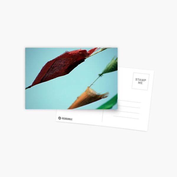 Flying Postcard