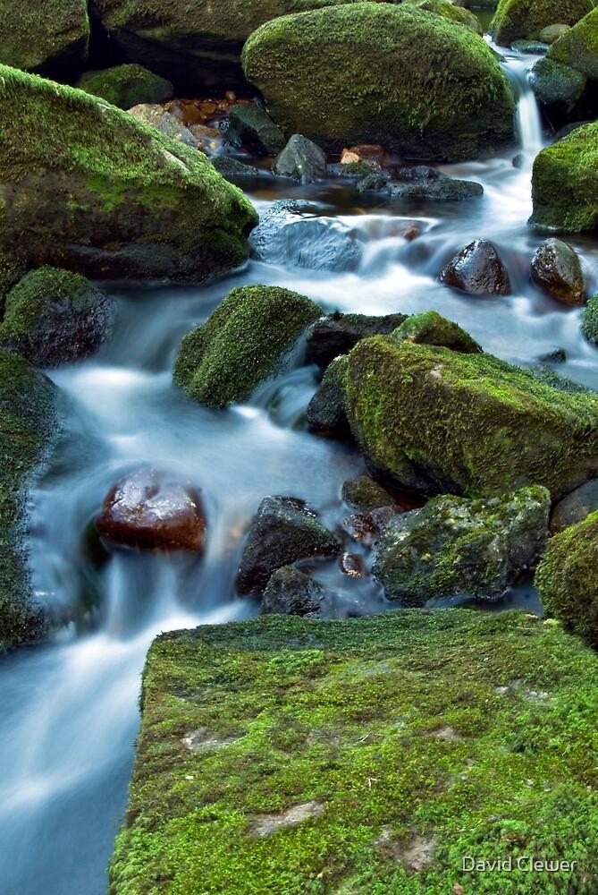 Dartmoor Stream by David Clewer