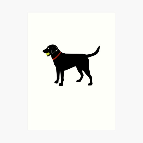 Labrador Retriever Fetch, Black Lab Play Ball Art Print