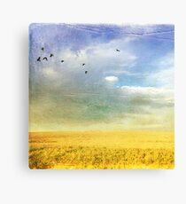 Graceful Hues Canvas Print