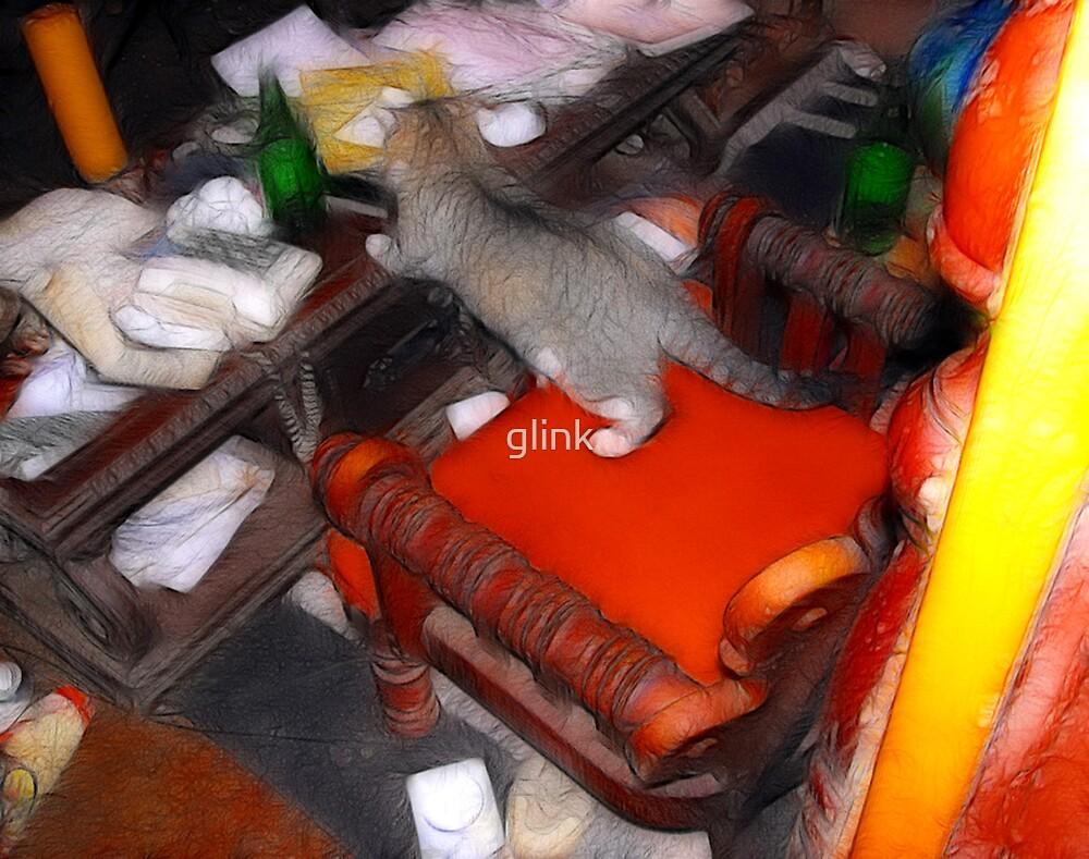 Carl's Cat by glink