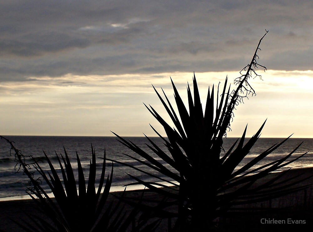 Silhouette of a Beach by Chirleen Evans