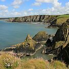 Pembrokeshire Coast by RoystonVasey
