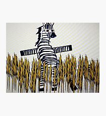 Comedy Zebra Photographic Print