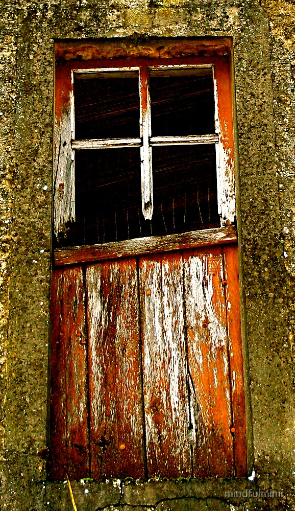 Rusty old door by mindfulmimi