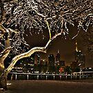 November city snowscape by Dafs