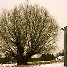 The barntree by mindfulmimi