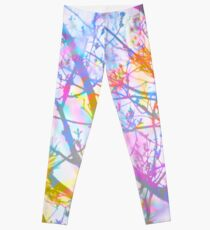 The Mist that Birthed the Rainbow Leggings