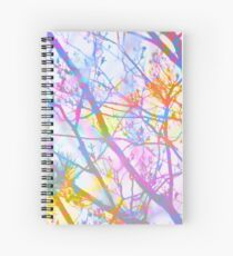 The Mist that Birthed the Rainbow Spiral Notebook