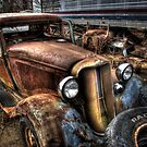 """""""Rotting Away'....II by raberry"""