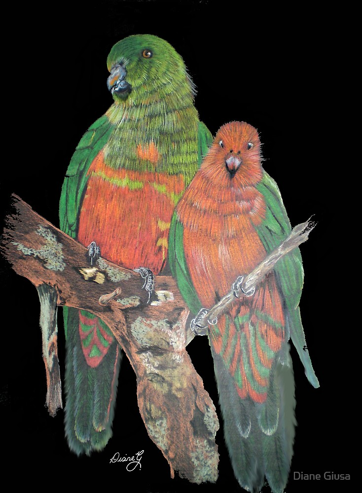 Parrots by Diane Giusa
